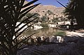 Dunst Oman scan0146 - Pool.jpg