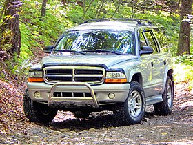 Durango in the woods.jpg