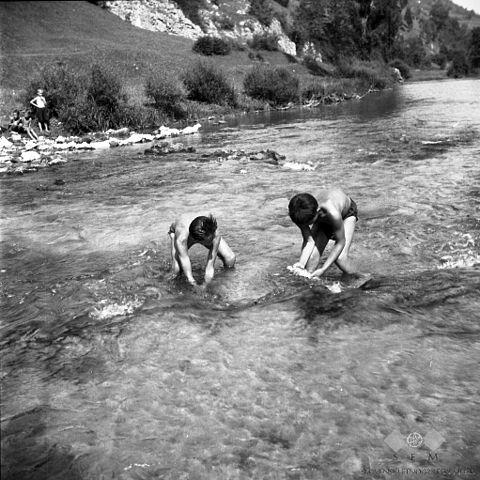 two boys guddling in a stream
