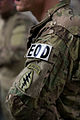 EOD hosts joint IED, terrorist training 140328-M-LZ697-379.jpg