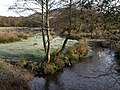 East Webburn River near Widecombe - geograph.org.uk - 680385.jpg