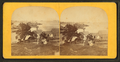 Eastport harbor, from Robert N. Dennis collection of stereoscopic views.png