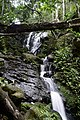 Eieke, Olumirin Water Falls, Erin Ijesha.jpg