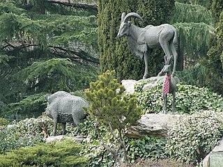 Fauna Mayor Ibérica I, Madrid