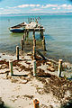 El Guamache, Coche Island (2).jpg