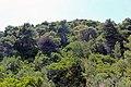 Elation 290 91, Greece - panoramio (41).jpg