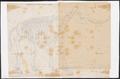 Elephas africanus - skelet - 1700-1880 - Print - Iconographia Zoologica - Special Collections University of Amsterdam - UBA01 IZ22000099.tif