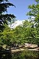 Erdély, Szováta, Vörös-tó, 10.jpg