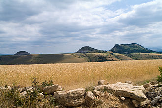 Lozère - Cereals field near Les Bondons, dominated by the hills called Puechs des Bondons.