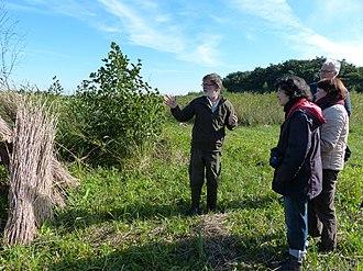 Vereniging Natuurmonumenten - Image: Excursie Natuurmonumenten Vlietlanden