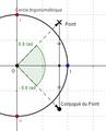 ExponentielleComplexe Conjugué.png