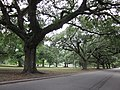 FDR Mall City Park NOLA June 2011 C.JPG