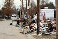 FEMA - 21402 - Photograph by Greg Henshall taken on 01-17-2006 in Louisiana.jpg