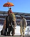 FIL 2016 - Grade parade - éléphant 3622.jpg
