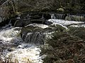 Falls on the Strathrory River - geograph.org.uk - 1803763.jpg