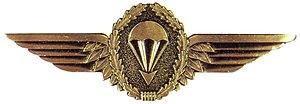 Frederick Kroesen - Image: Fallschirmspringerab zeichen der Bundeswehr in Bronze