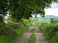 Farm Track near Earlston - geograph.org.uk - 840640.jpg