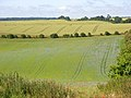 Farmland, Great Shefford - geograph.org.uk - 892956.jpg