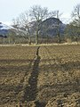 Farmland near Comrie, Perthshire - geograph.org.uk - 148345.jpg