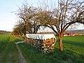 Feldweg mit alten Obstbäumen - Meinhard-Grebendorf Siedlungsstraße - panoramio.jpg