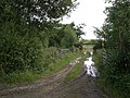 Field access track - geograph.org.uk - 494777.jpg