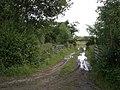 Field access track - geograph.org.uk - 494777.jpg