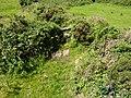 Field path stile. - panoramio.jpg