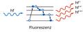 Fig7 fluoreszenz.png