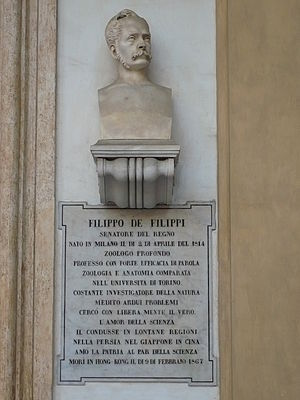Filippo de Filippi - Bust of Filippo De Filippi, University of Turin