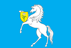 Flag of Chertanovo North (municipality in Moscow).png