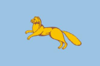 Shadrinsk - Image: Flag of Shadrinsk (Kurgan oblast)
