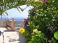 Fleurs et arbustes de calpe - panoramio.jpg