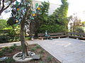 Flickr - Technion - Israel Istitute of Technology - IMG 1064.jpg