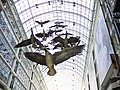 Flight Stop in flight at the Toronto Eaton Centre