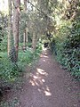 Footpath, Ampney Crucis - geograph.org.uk - 422017.jpg
