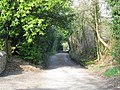 Footpath to Wick Hill, Finchampstead - geograph.org.uk - 1215196.jpg
