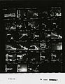 Ford A5333 NLGRF photo contact sheet (1975-07-02)(Gerald Ford Library).jpg