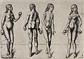 Four studies for Adam and Eve holding fruit. Heliogravure by Wellcome V0034185.jpg
