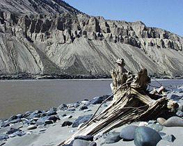Fraser River Canada 2002.jpg