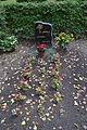 Friedhof Fredersdorf 64.JPG