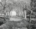 Friedrich Latendorf (1866-1935) - Parkweg am See.png