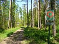 Friedrichshagen - Wanderweg (Woodland Path) - geo.hlipp.de - 36042.jpg