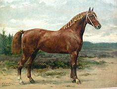 Peinture représentant le profil droit d'un cheval alezan bien proportionné mais à l'arrière-main forte; sa queue est ornée de rubans jaunes et sa crinière est tressée et elle aussi ornée de rubans jaunes.
