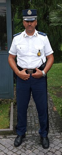 Gendarmerie Vatican City July 2011 cropped.jpg