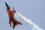 General Dynamics F-16AM Fighting Falcon Netherlands Air Force J-015.jpg
