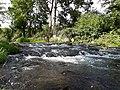 Gera River Plaue 1.jpg