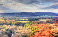 Gfp-wisconsin-wildcat-mountain-state-park-looking-at-the-forest-valley.jpg