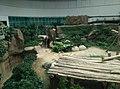 Giant Panda Conservation Centre in Zoo Negara Malaysia 2021 (18).jpg