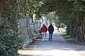Glasnevin Cemetery - (442797108).jpg