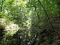 Glasowbach - panoramio (4).jpg